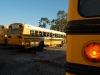 Calvary\'s Buses