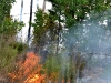 The fire along East Grade Road, I
