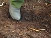Peat: Soil that Burns Long and Deep