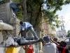 Haiti 2010 Earthquake Images, 4