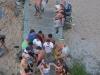 Boardwalk Broods