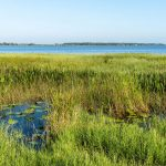 Lake Minneola in Clermont is at the center of an innovative water quality improvement project.