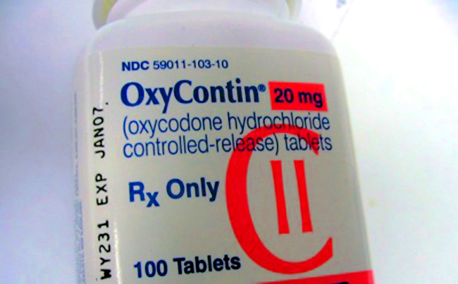 Oxycontin pill mills regulation florida flaglerlive