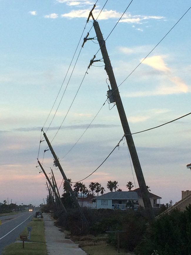 Power poles on A1A, post-Irma. (© FlaglerLive)