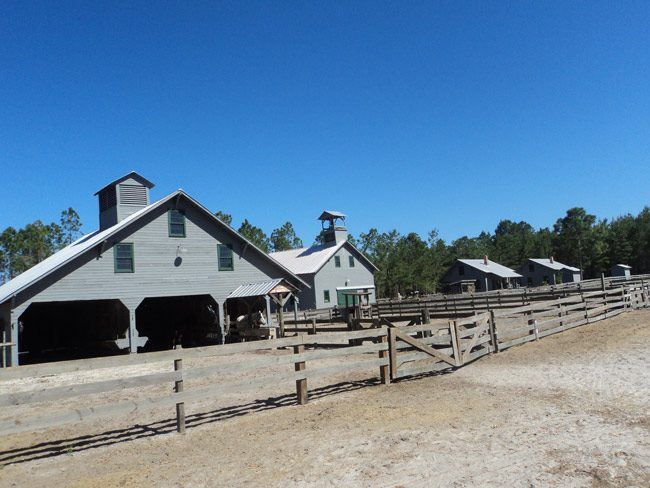 The Florida Agriculture Museum in Palm Coast is failing, and looking for a bail-out. County government stepped in. (© FlaglerLive)