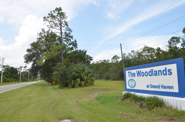 The proposed apartment complex would go up just north of the Oak Trails Boulevard entrance to the Woodlands, off Old Kings Road. (c FlaglerLive)