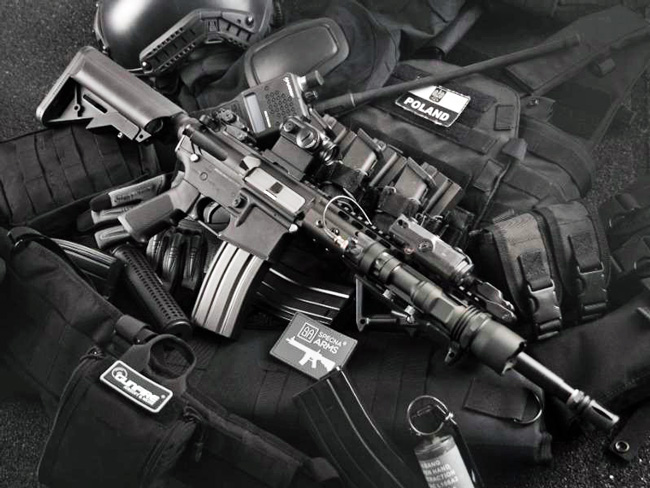 Ban Assault Weapons NOW, the political committee behind the proposed constitutional amendment, drew more than 28,000 contributions totaling $595,000 in August. (NSF)