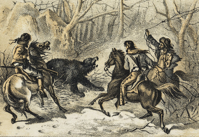 bear hunt slaughter