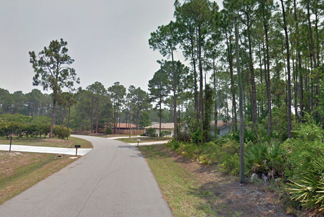 Beckner Lane in Palm Coast, the quiest residential street where Sophia Zhudro's detention and arrest unfolded on Jan. 24.