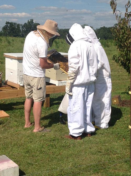 bee keepers garden club