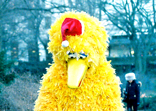 PBS funding eliminated in Florida: The winter of Big Bird's discontent, compliments of Florida.
