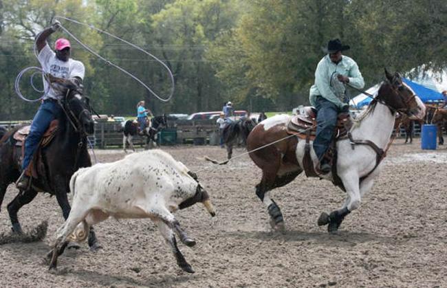 Florida S Black Cowboys An Exhibit Bucks Stereotypes