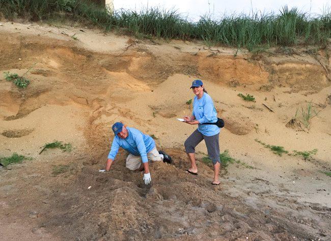Turtle Patrol volunteers Bob and Linda Jaeger at the foot of Flagler's dunes.