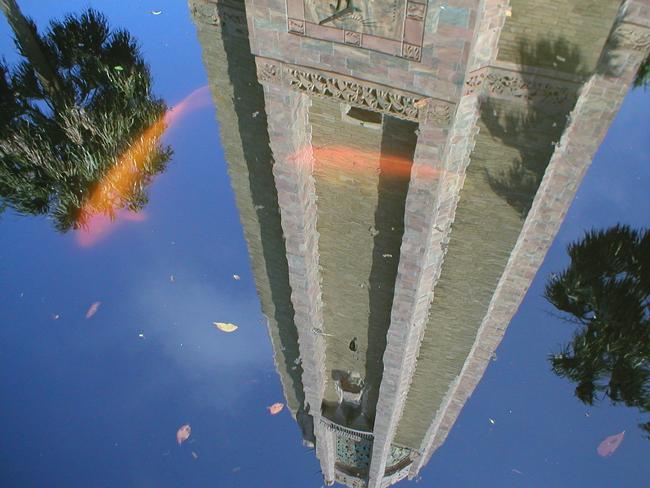 Bok Tower Lake Wales Florida