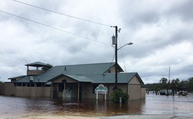 Beloved Bull Creek Fish Camp by Dead Lake on the west side was under water this morning. (c FlaglerLive)