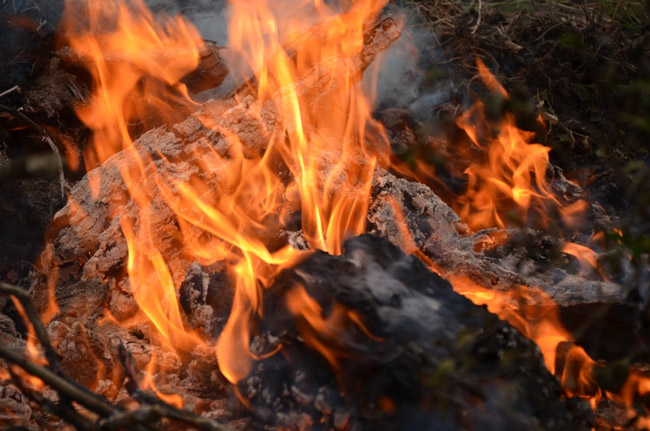 flagler county burn ban 2017
