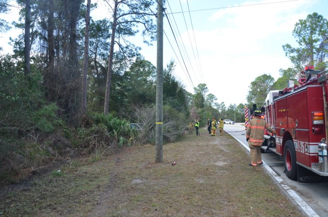 The Cadillac narrowly missed a utility pole, averting serious injury to the driver, before ending up in the brush. Click on the image for larger view. (© FlaglerLive)