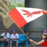 cadada marijuana laws