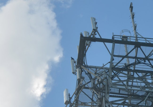flagler cell towers