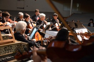 palm coast chamber players