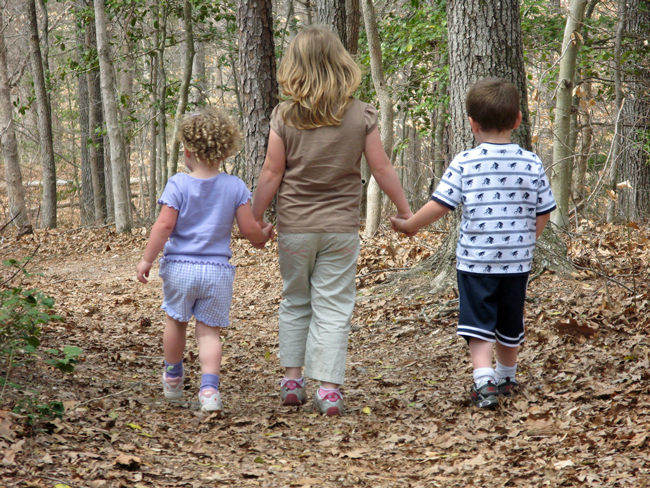Florida Legislature 2014: For children, it's into the woods.