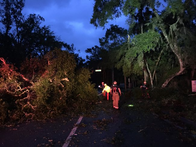 Palm Coast crews were joined by Flagler County crews to clear a large tree from blocking Colbert Lane at Palm Coast Parkway at dawn. (Cindi Lane/Palm Coast)