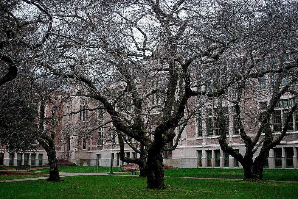free college education sanders