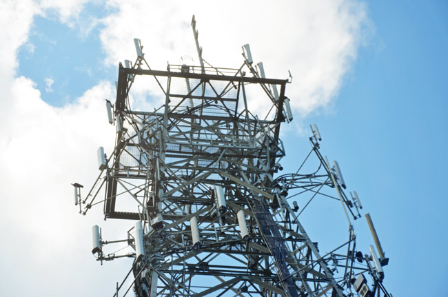 800 mhz system flagler county palm coast