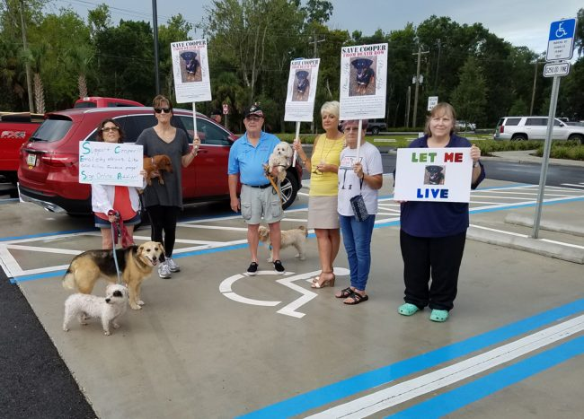 Advocates for Cooper the dog demonstrating outside the Palm Coast Community Center on Aug. 28. (John Brady)