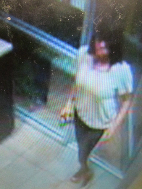 A surveillance camera still of a woman who used counterfeit bills at McDonald's and Mobil on State Road 100.