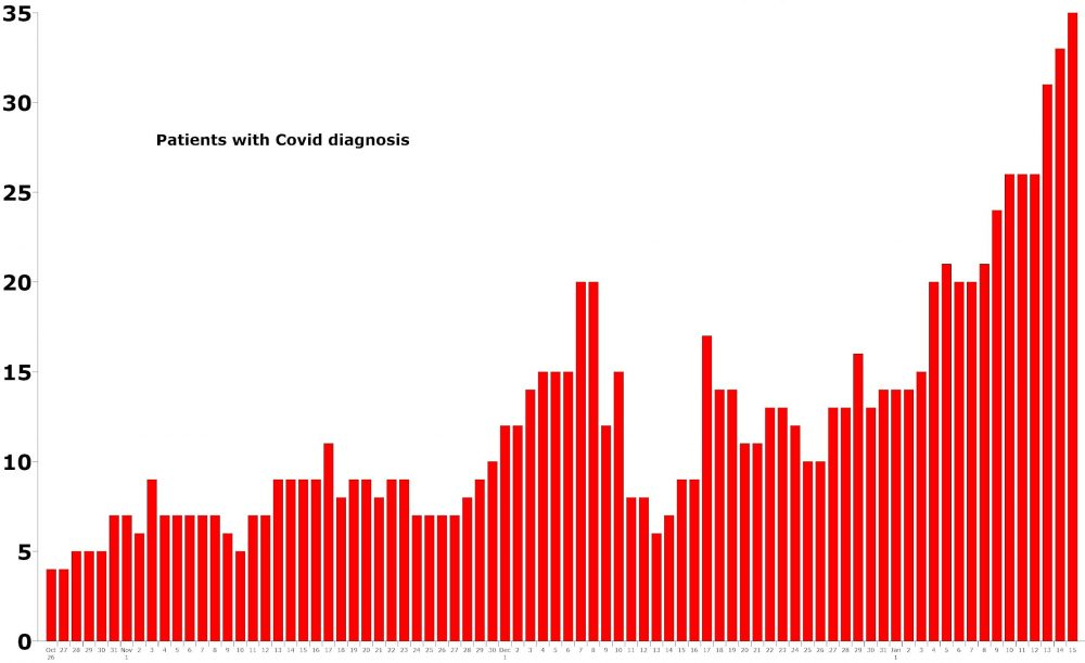 The daily count of patients hospitalized with a primary diagnosis of Covid-19 at AdventHealth Palm Coast since October, through today. Click on the graph for larger view. (© FlaglerLive)