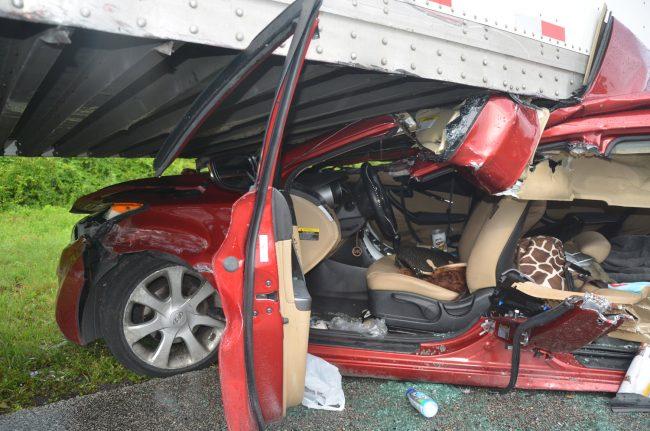 crash survivor i-95
