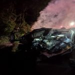 Fire engulfed both vehicles before firefighters were able to extinguish the flames. (FCSO)