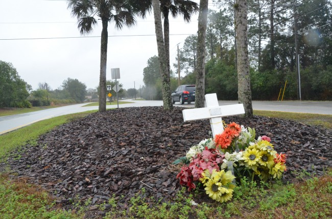 Saturday's fatality is the second in 18 months on that stretch of Whiteview Parkway. Pedro Riera was killed at the intersection of Rolling Sands and Whiteview in August 2012. (c FlaglerLive)