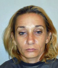 dana mathese arrest palm coast grand theft