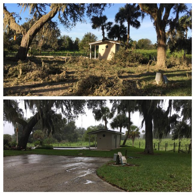 Palm Coast damage hurricane matthew
