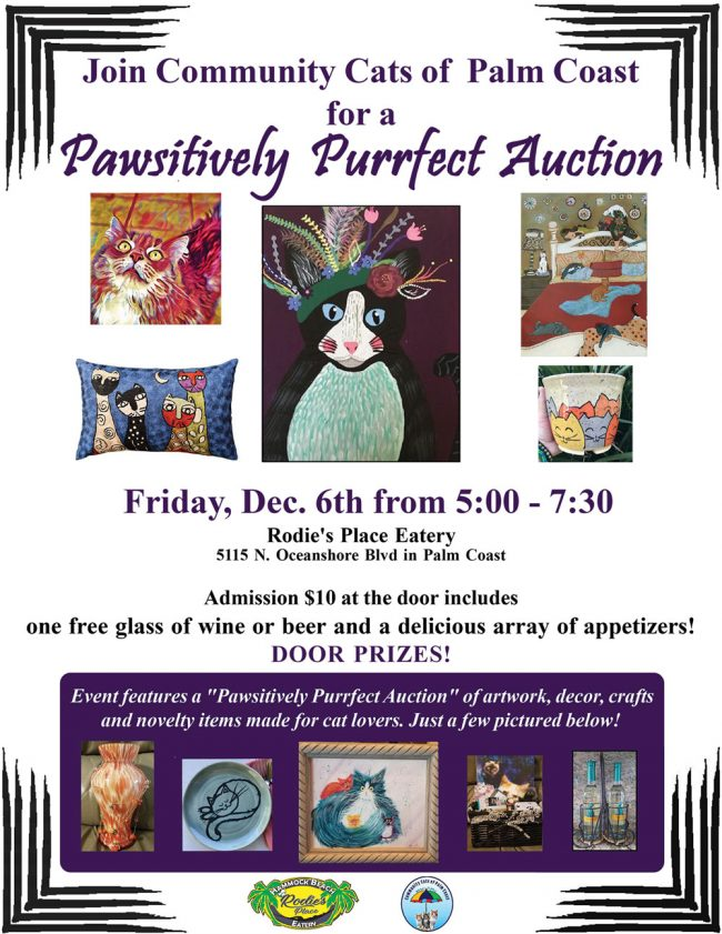 community cats of palm coast auction