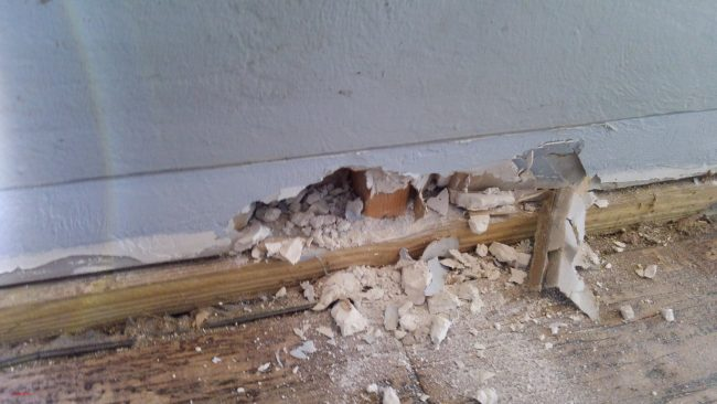 A sample of the 'destructive' inspection at the restaurant. Click on the image for larger view. (Flagler County)
