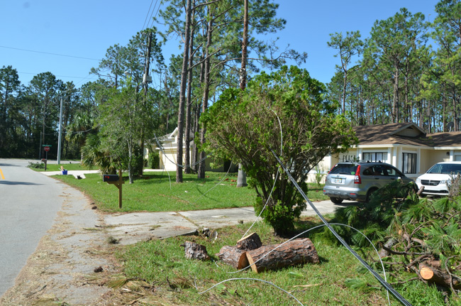 Four days after the storm, power lines were still down and running across a driveway at Porcupine and Point Pleasant Drive in Palm Coast. (c FlaglerLive)