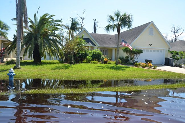 malacompra drainage