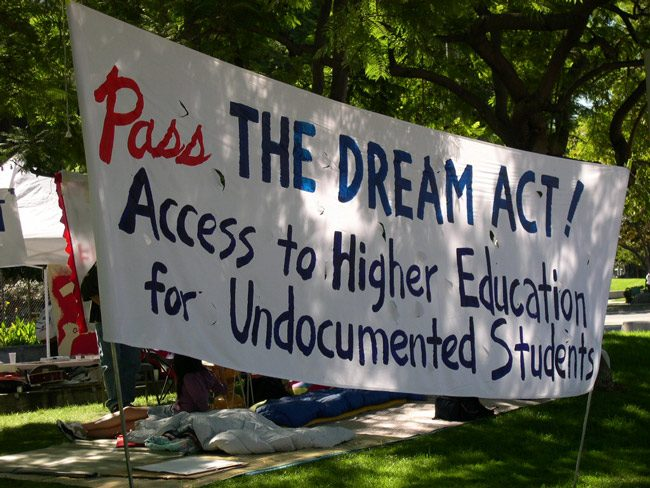 dream act florida