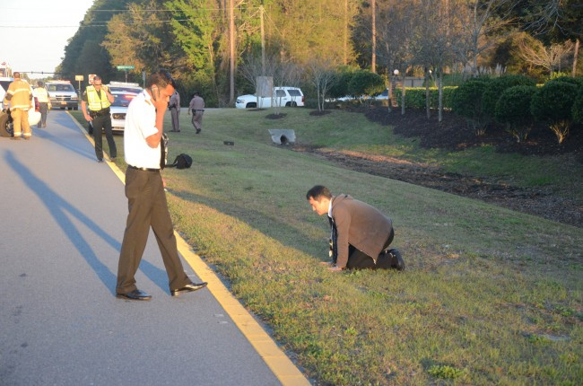 Raul D'Souza, standing, and Joo Lee, kneeling on the grass, shortly after the emergency landing. Click on the image for larger view. (© FlaglerLive)