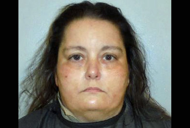Elisabeth Akers of Palm Coast faces two felony and two misdemeanor charges.