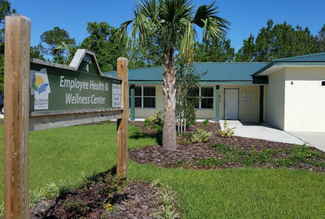 flagler county government health care