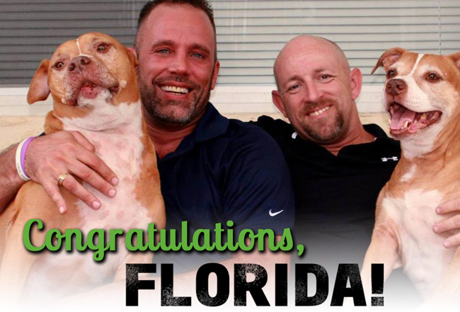 An image distributed by Equality Florida, the same-sex marriage advocacy organization, featuring Aaron Huntsman and William Lee Jones, who successfully challenged the gay-marriage ban in Monroe County. They can get married next Tuesday.