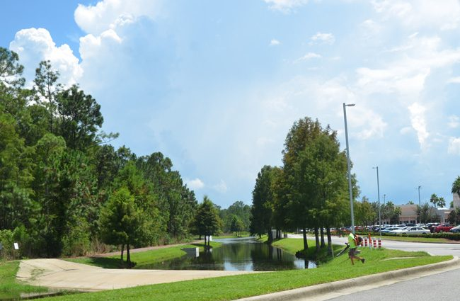 The trail that runs on the east side of the Florida Hospital Flagler campus. (c FlaglerLive)