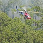 Flagler County FireFlight, the county's emergency's helicopter, during Friday's operation. (Flagler County)