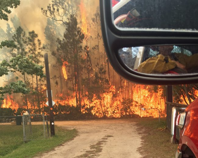 Fire in the Mondex. Click on the image for larger view. (Flagler County Fire Rescue)