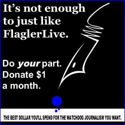 flaglerlive flagler live support palm coast flagler county news pierre tristam