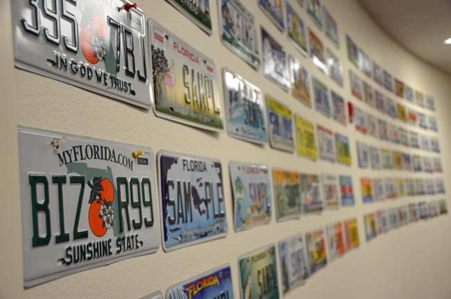 Smacked By Local Tax Collectors Florida Retreats On License Plate